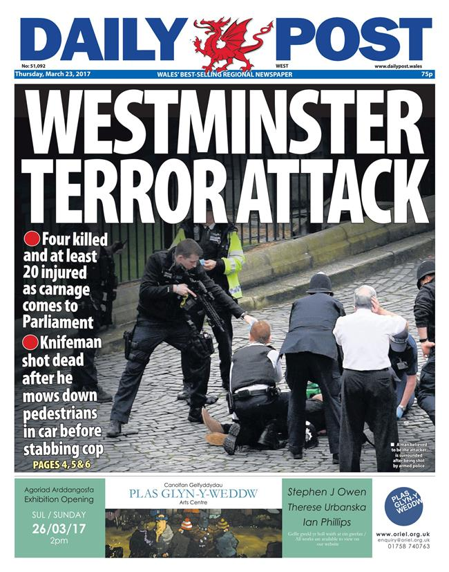 terror daily post