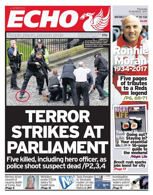 terror echo